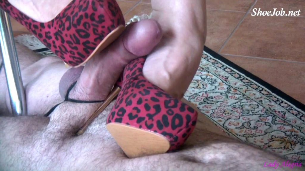 Cum my stiletto fucker – Lady Alegria`s Footfetish