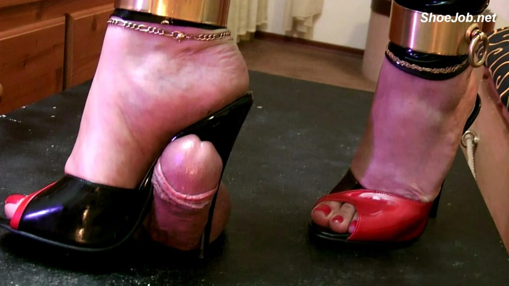 New Fuss Mules On Trample Table – Bound and Milked